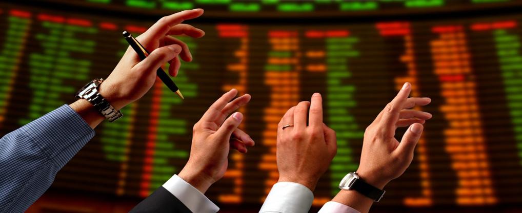 Penny Stock Investors